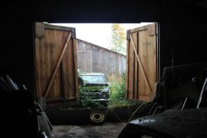 Looking for a barn find by finhead4ever