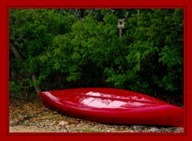 Red Canoe on a rainy Day by DleeKirby