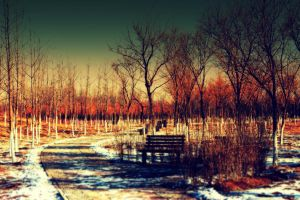 After the snow of winter landscape by sunny2011bj