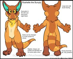 Roshelle Ref by Carlie-NuclearZombie