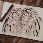 Barred Owls by stardust12345
