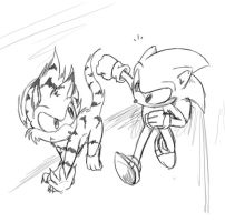 sonic and tigear by tierafoxglove
