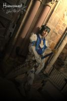 FFXIV Paladin Cosplay by hwaiting