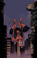 Spidey Street Fight Colors by jessemunoz