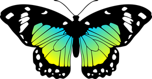 Butterfly (Blue, Green, Yellow) by Eiluvision