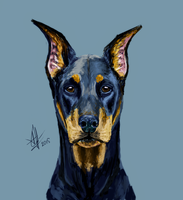 Doberman 2 by lonely-wolf-22