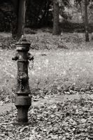 the hydrant. by Juuulz