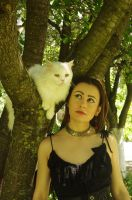 With white cat 04 by Anna-LovelyMonster