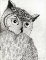Great Horned Owl by owlmaddie