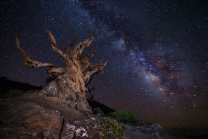 Ancient Skies by StevenDavisPhoto