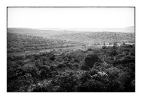 South Africa - landscape # 1 by thelizardking25