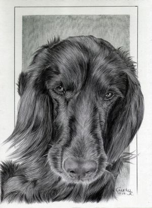 Ballpen Dog Commission by Cindy-R