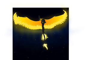 Wings of fire to bring the night by Silverstormwing