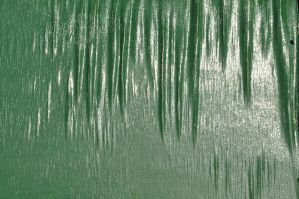 painted wood texture one by density-stock