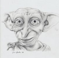 Dobby by Godisinvincible