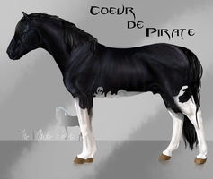 Coeur de Pirate by The-White-Cottage