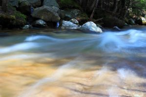 In the Flow by Celem