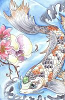 ACEO Trade Koi by SophieDragon