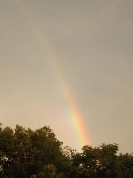 Rainbow in the Storm by Prussia-Hungary