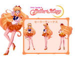 Sailor Venus Character Sheet by scpg89