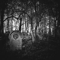 In Affectionate remembrance by RickHaigh