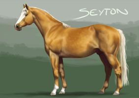 KhC Seyton by sealle