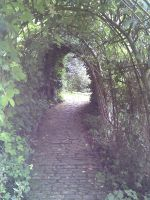 Into the Archway by saxonraven