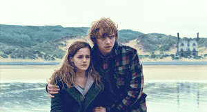Ron and Hermione by JustEliseMaybe