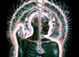 Lateralus - Decay by tool-band