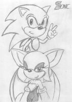 Sonic and Rouge by AEIFS