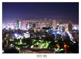 Tokyo from the sky by logann