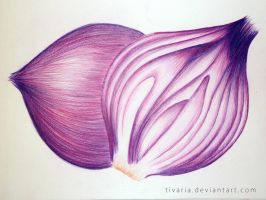 Red Onion by Tivaria
