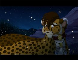 Cheetah Evening by kohu-arts