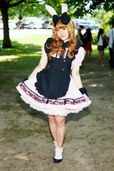 Maid/Lolita Outfits High Park 2015 #03 by Lightning--Baron