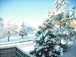 2009 Winter Snow Storm Pic1 by MarcusMcCloud100