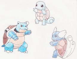Squirtle's Evolutions by koala-net