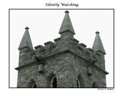 Silently Watching by David-A-Wagner