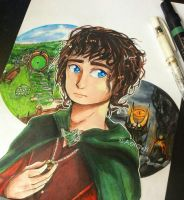 From The Shire to Mordor by Aeraviss