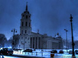 Vilnius Cathedral by minjod