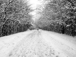 Cold Way by fk2