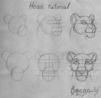 Head tutorial by OmegaLioness
