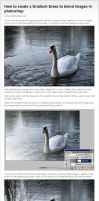 Gradient Erase Tutorial by melemel
