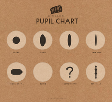 Official PUPIL Chart by yeep-yeep