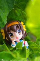 Haruhi on the leaves by kazuki2013