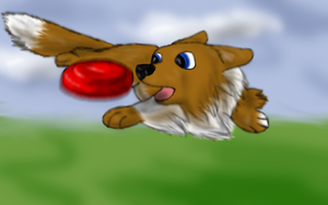 Frisbee Dog by Colliequest