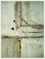 iPhoneography Michigan Road Series by Gerald-Bostock