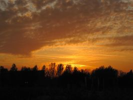 28-10-09 Sunset 6 by Herdervriend