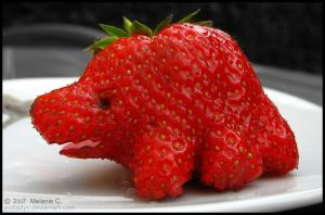 Strawberry or Dinosaur by evilladyc