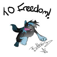 To Freedom! by TheLoneWolfGirl9999