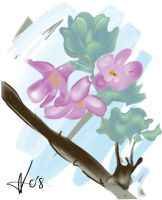 Chinese Style Flower painting by Galen82